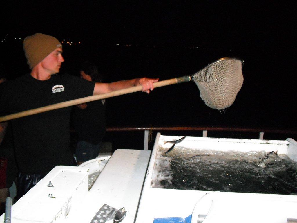 SGN第8回マグロ釣りチャーター 15