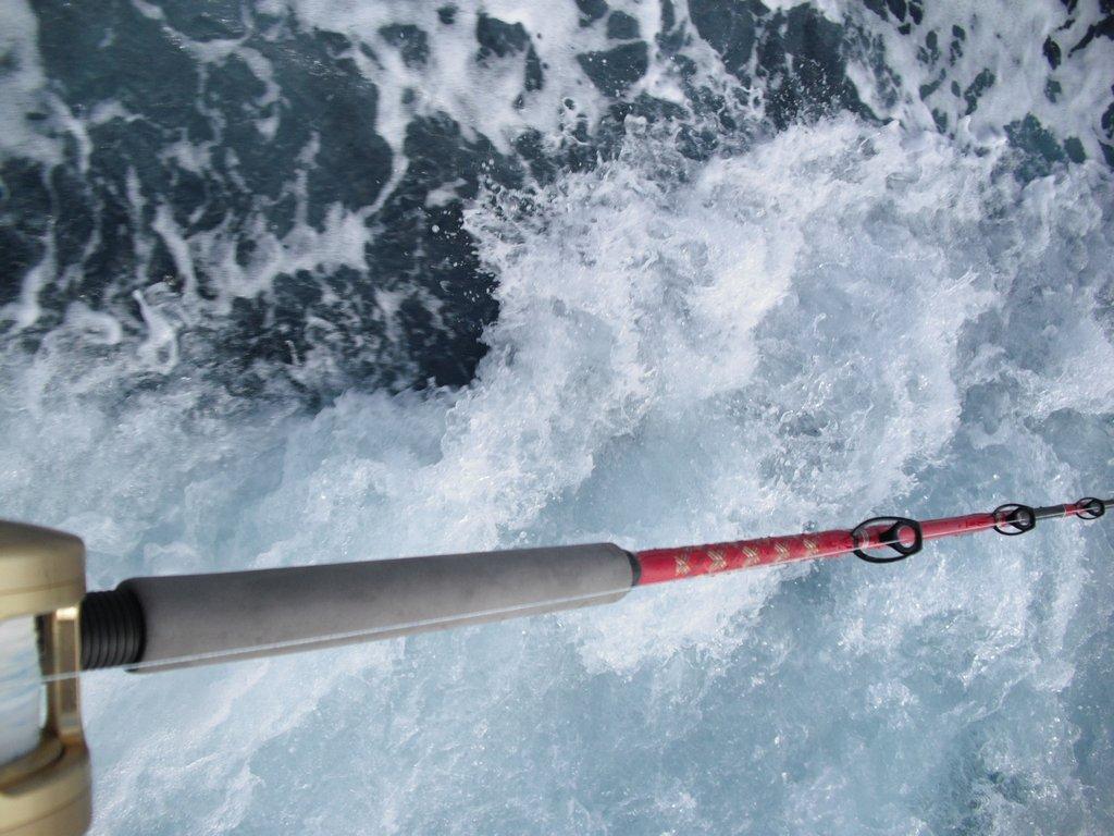 SGN第8回マグロ釣りチャーター 59
