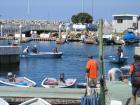 第二回SGN釣り大会  8