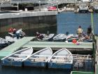 第三回SGN釣り大会(2007年6月) 6