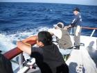 SGN第8回マグロ釣りチャーター 109