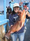 第1回 SGNビギナーの為の海釣り(船釣り) 16